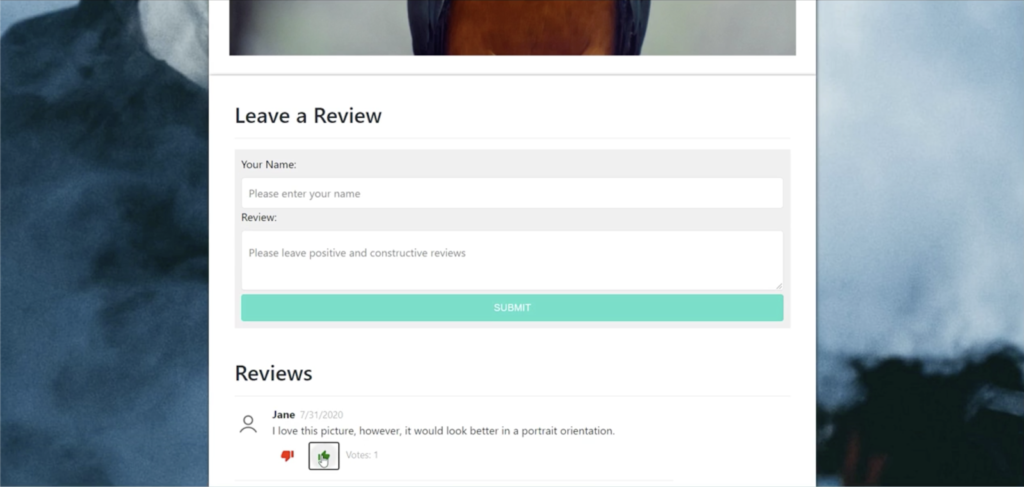 Screenshot of a review submission form on an artist portfolio website.